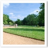 芝と道のエッジングの曲線がきれい。