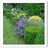 狭さゆえに 工夫をした花壇です。