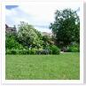 庭の真ん中を 芝生で広がりを出して コーナーに花壇を造っています。
