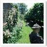 塀を利用すると 立体的な庭つくりができます。