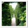 ロング・ウォークの生垣に開いた入り口から 覗くと予想外の庭が見える。