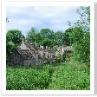 ウイリアム・モリスが 「美しい村」といったことから 始まっている。