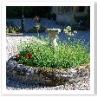 石の花壇。日時計のガーデンオーナメント。