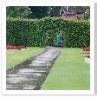 庭の中央に舗装の道が。その先に生垣のゲート。