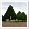 蓋付きのアーン。庭には骨壷を置くことで格式のある庭のイメージを持たせた。