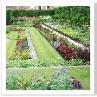 周囲を塀や生垣で囲い 床は花壇、通路、芝で整然と形作る。