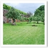 長いパーゴラとサンク・ガーデンとの間にある細長い庭。