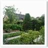 メープルガーデンは 以外と小さい庭でした。