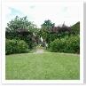 サークルは高さの違う庭をうまく結んでいる交差点なのでしょう。