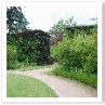 生垣は目線より高く 庭ごとの 段差が見えないようになっています。