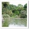 小鳥のトピアリー 手前が 池。