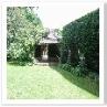 小屋も隠れるぐらい高い生垣。