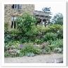 建物の壁まで 有効に利用して 立体的な庭造りになってますね。