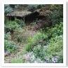 壁泉のある池を囲むように丸階段があり ストレート階段が宮殿の様ですね。