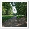 公園の中 径は続く