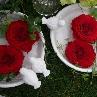 第10回国際バラとガーデニングショウ