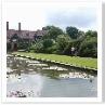池を取り囲む芝生の広がりが 池や噴水を引き立てています。