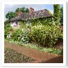 遠近感を強める配置の建物の壁に伝う緑で 庭との一体感が生まれています。