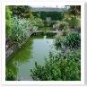 壁泉から流れ出した水は池に入る。