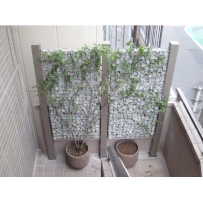 松竹株式会社_戸建て・エコ緑化 施工例