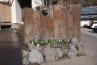 浅間石の花壇と季節ごとに咲く草花