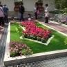 可愛らしい整形花壇。