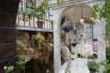 国際バラとガーデニングショウ Living Garden…そこは植物達のテーマパーク2 / /