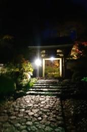 龍潭寺 紅葉まつり・秋の寺宝展 夜間特別公開02 /