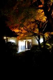 龍潭寺 紅葉まつり・秋の寺宝展 夜間特別公開10 /