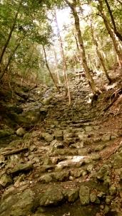 晩秋の湖北五山巡り その2 - 15 / / / / /