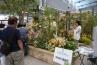 同じく仙台の泉緑化は、ボタニカルガーデンを運営するだけあって、花壇スペースに花一杯の展示。