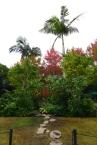 A-2 チャン ファインさんの作品。「おじぎ草の夢」。シンガポールの方です。南方系の植物をうまくまとめてあります。 / / /