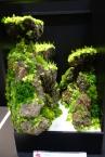 インテリアフラワー部門 「水彩」。一見してアクアリウムのような芳賀裕晃さんの作品。
