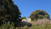 初春の遠州名園巡り14:気賀の長楽寺