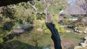 初春の遠州名園巡り32:鷲津の本興寺