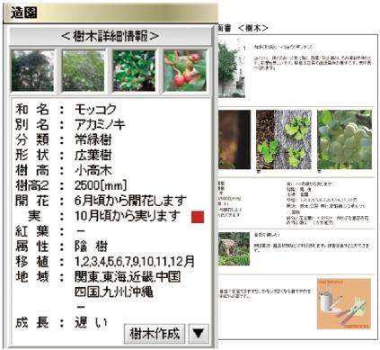 設計に役立つ樹木図鑑
