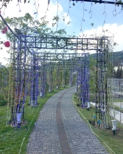 バラの回廊