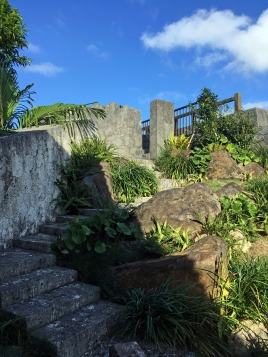 上へ上る階段の動線も植栽の雰囲気もいいです。