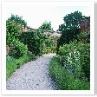 奥の庭から 前の庭との境を見る。