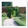 ボックス・ヘッジから 奥の庭はハーブで仕切られていました。 柔らかな感じ。