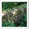 ライムストーンを積んだ羊を囲うための塀。隙間に小動物がいるそうです。
