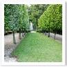 Stilt Garden(支柱庭園)stiltは竹馬とか高足などの意味もある。