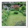 この庭にも ボランティアの援助があるのでしょうか。