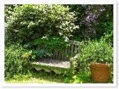フォーカルポイントのベンチ