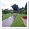 雨の中でも 異彩を放っていた トップ・テラスという細長い庭でした。