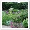 塀や生垣に囲まれていても このサンク・ガーデンは広々とした開放感があった。