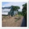 世界中の高山植物を栽培展示しています。温室と 屋外展示。