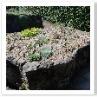 高山をイメージさせる花壇。