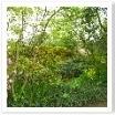 里山をイメージしたお庭。遠くの山々を連想させます。