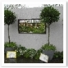 """""""枠""""を作るとお庭が""""額入りの絵""""に見えます。"""